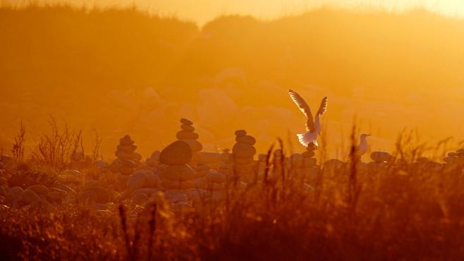 Abends am Küstenland – von: Eurofoto ©Eurofoto
