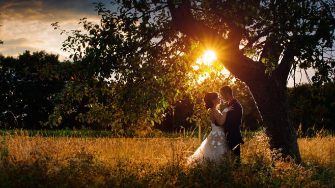 Love in Gold – von: Fotografie-Link ©Fotografie-Link