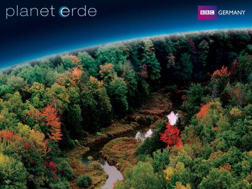 Wallpaper BBC Germany: Waldwelten © BBC Germany
