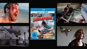 Sharknado ©Delta Music & Entertainment GmbH & Co. KG; Drop-Out Cinema eG