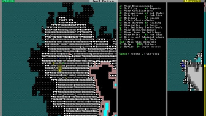 Dwarf Fortress © Bay 12 Games