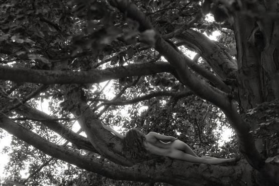 Sur la branche ©sinnlichefotos