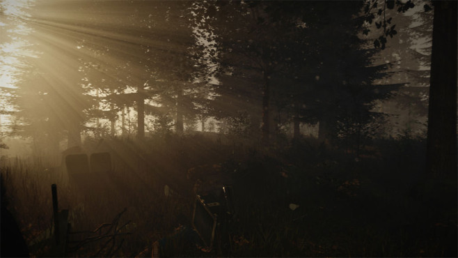 The Forest: Licht © Endnight Games