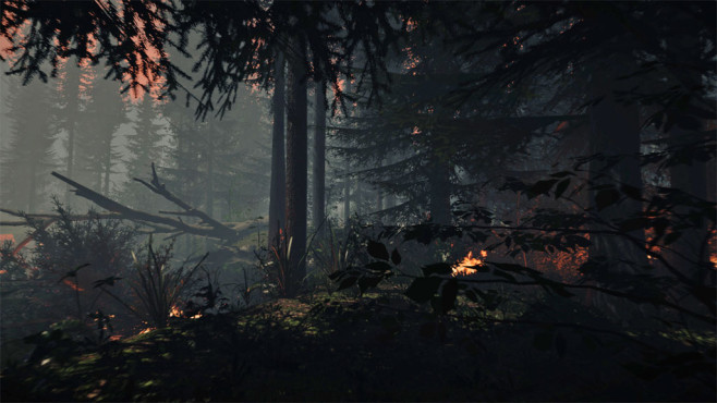 The Forest: Wald © Endnight Games