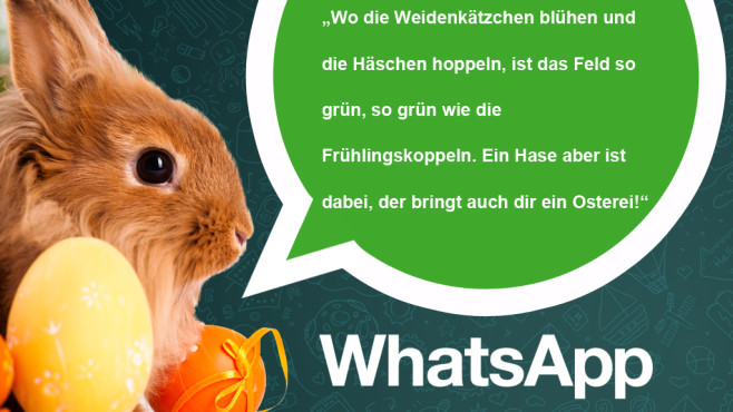 Die coolsten und lustigsten WhatsApp-Ostersprüche ©WhatsApp