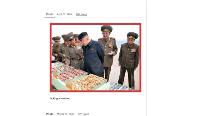 Kim Jong Un Looking at Things Tumblr © http://kimjongunlookingatthings.tumblr.com/