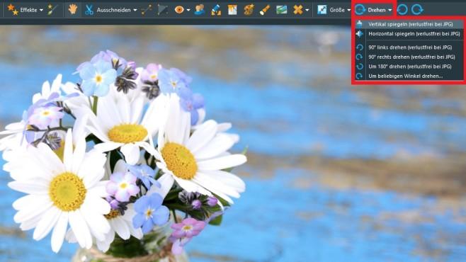 Bild beliebig drehen ©Fotolia--S.H.exclusiv-Blumenstrauß - Gänseblümchen und Vergissmeinnicht