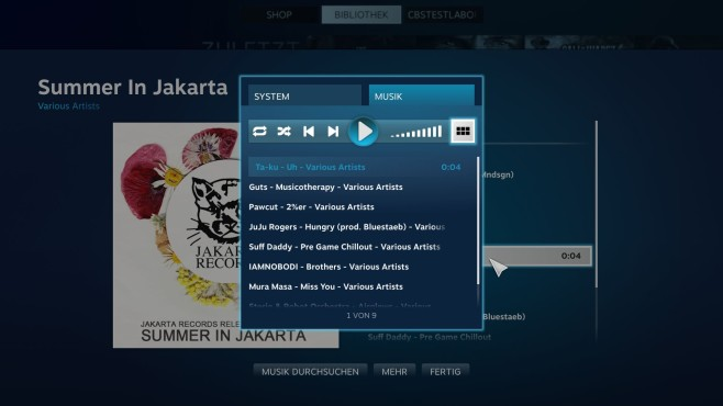 Steam: Music Beta © Valve