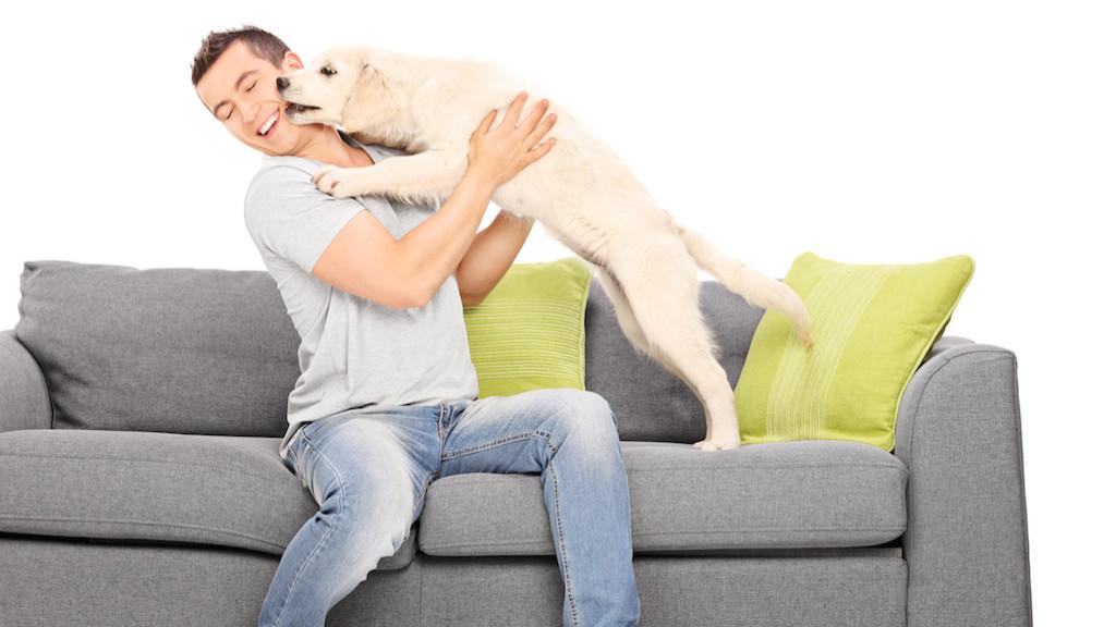 Single frau mit hund