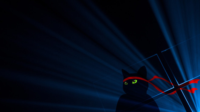 Windows 10 Anniversary Ninjacat Wallpaper ©Microsoft