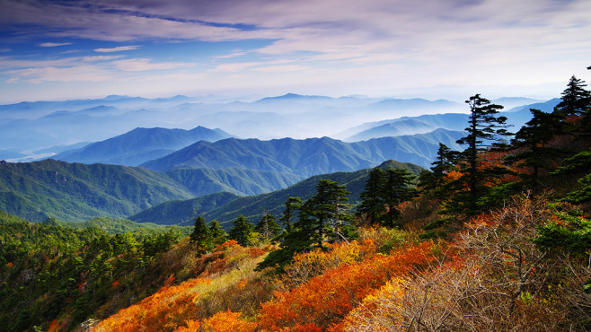 Mount Jiri Nationalpark, Korea © Getty Images - Oasis