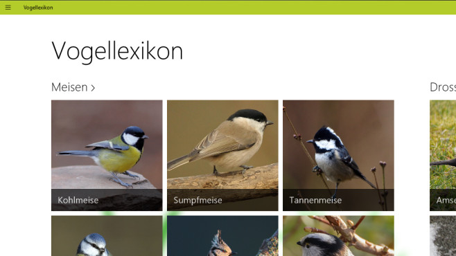 Vogellexikon: Virtuelle Naturexpedition © COMPUTER BILD