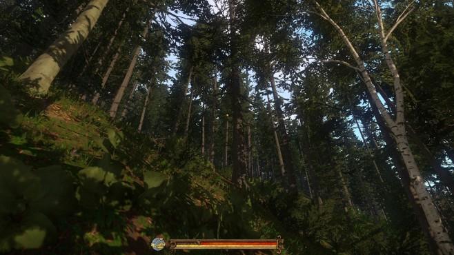 Screenshot Kingdom Come - Deliverance: Wald ©Warhorse Studios