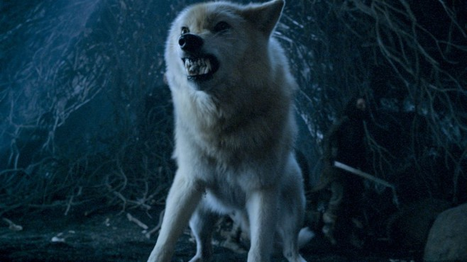 Dire Wolf © HBO