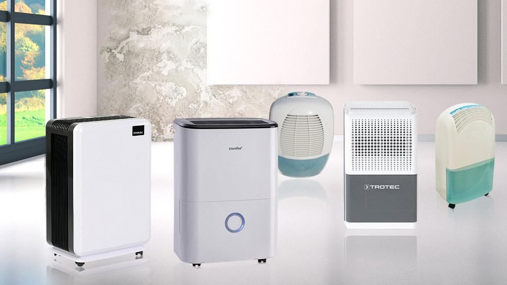 Luftentfeuchter Gegen Schimmel : berblick luftentfeuchter gegen schimmel computer bild ~ Michelbontemps.com Haus und Dekorationen