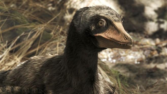 Früher Mix aus Vogel und Dinosaurier ©Arte France/Saint Thomas Productions
