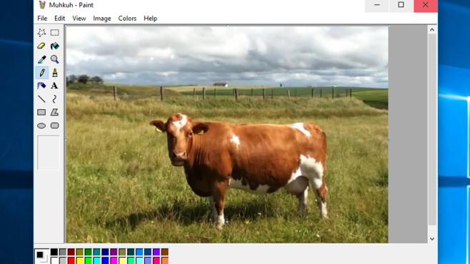 Paint XP for Windows 7: Nüchterne Bildbearbeitung ©COMPUTER BILD