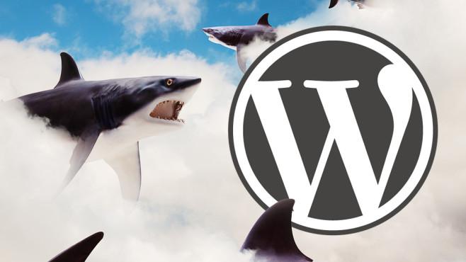 Wordpress unsicher ©Wordpress, John Lund/gettyimages
