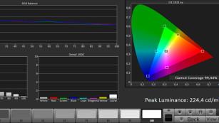 """OLED-Fernseher Panasonic EZW954: Kontrast-Künstler im Test Volltreffer: Im Bildmodus """"Professional 1"""" sind Farben und Helligkeitsabstufungen ab Werk nahezu perfekt justiert, wie die Messung mit Calman von  zeigt. ©COMPUTER BILD"""