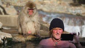 Kieling mit Affe ©Frank Gutsche/ZDF