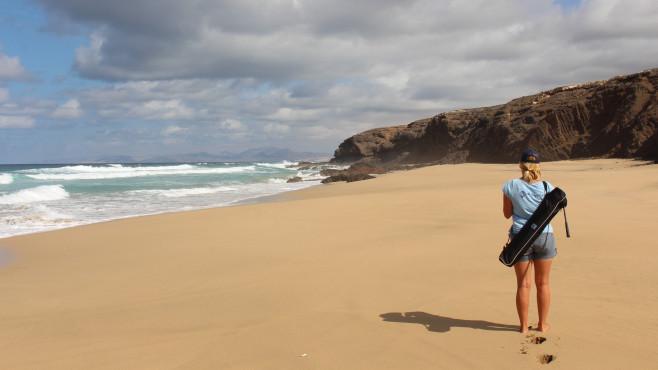 Beach-Inspector ©Beach-Inspector