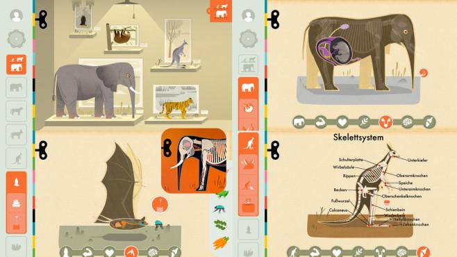 Mammals by Tinybop ©Tinybop Inc.