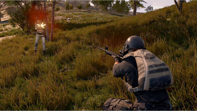 PlayerUnknowns Battleground © BlueHole