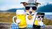 Oktoberfest Party-Hund ©©istock.com/damedeeso