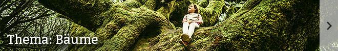 Thema: Bäume©istock/ferrantraite