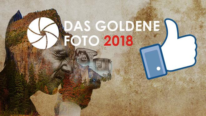 Facebook-Fan vom goldenen Foto werden! ©Rawpixel.com – Fotolia.com