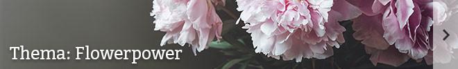 Thema: Flowerpower©istock/marichka_b