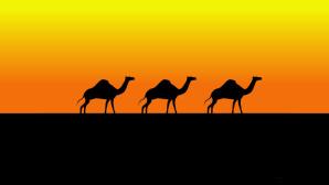 Kamele ©NewFreeScreensavers.com
