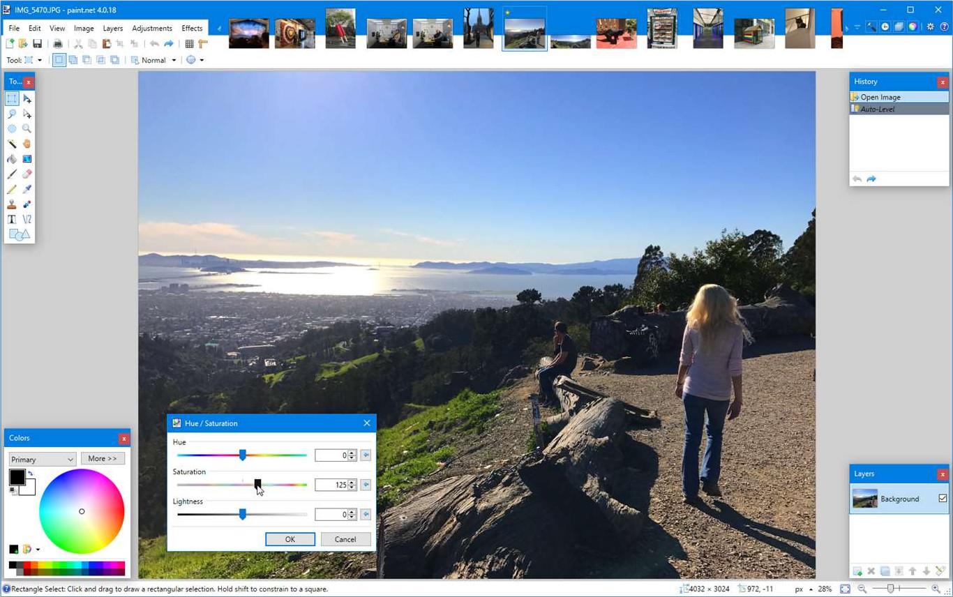 Screenshot 1 - Paint.NET (Windows-10-App)