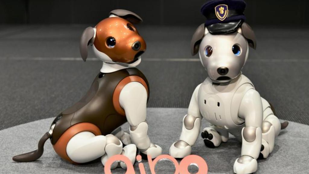 Intelligens robot kutya házi kedvenc az Aibo , társ akár elfoglalt embereknek és kutyaallergiával küzdőknek