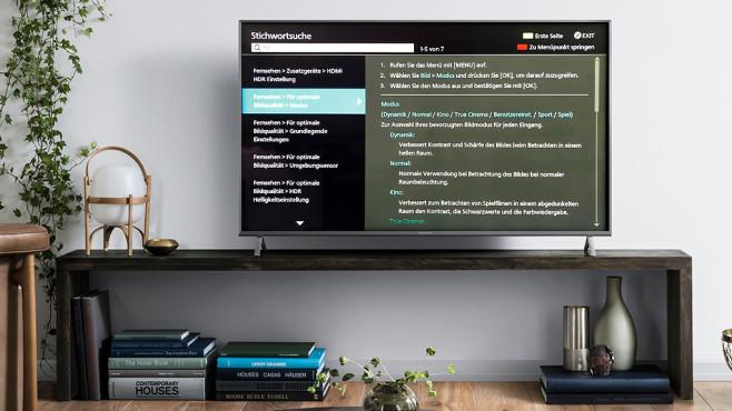 Panasonic-Fernseher mit Bedienungsanleitung auf dem Bildschirm©Panasonic, COMPUTER BILD