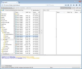 FireFTP für Firefox