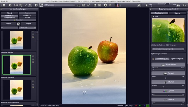 Screenshot 1 - Focus Projects Professional – Kostenlose Vollversion (Mac)