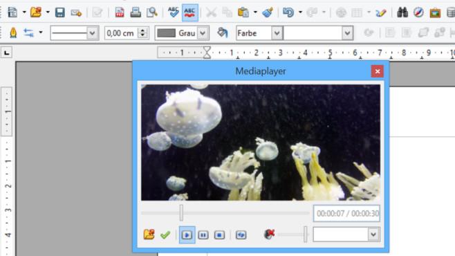 OpenOffice mit verstecktem Media-Player: So nutzen Sie ihn für Audio-/Videodateien©COMPUTER BILD