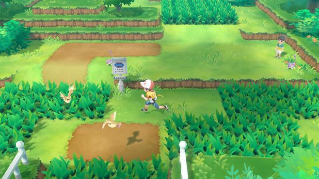 Pokémon – Let's Go: Treffen der Spielergenerationen In freier Wildbahn stößt der Spieler nicht mehr zufällig auf Pokémon, sondern sieht sie in der Gegend umherwandern und kann aktiv in sie hineinlaufen, um eine Fangsequenz auszulösen.©Nintendo
