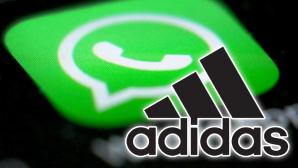 Adidas auf Whatsapp©Whatsapp / Adidas (Montage)