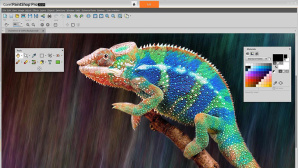 Corel PaintShop Pro 2019: Bildbearbeitungsfenster © Corel