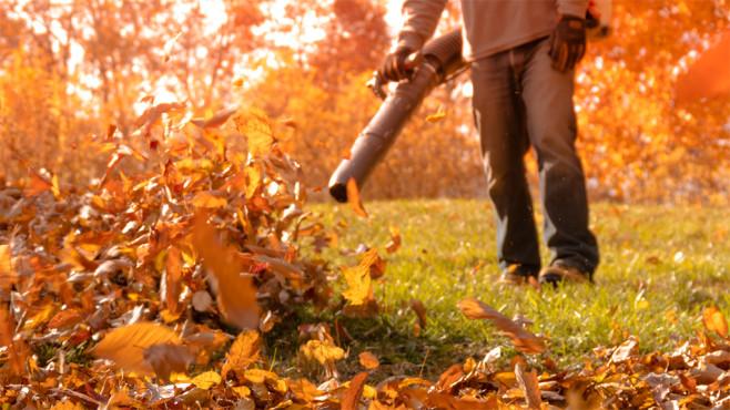 Gartenpflege im Herbst©istock/Rabbitti