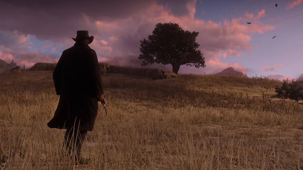 Red Dead Redemption 2: Fundorte aller Traumfänger