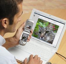 """""""AceMedia"""" und """"Pocket-PC Photobrowser"""" erleichtern die Archivierung von Bildern auf  PDAs und PCs."""