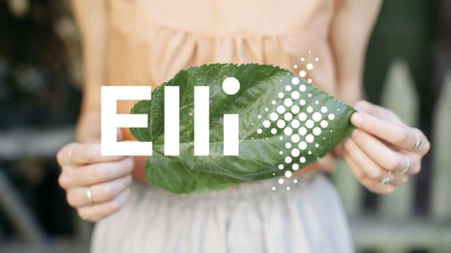 Elli©Elli/Volkswagen