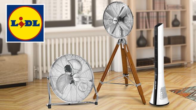 Lidl-Ventilator: Preis-Check und Alternative©Lidl, iStock.com/Bulgac