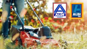 Aldi-Garten-Angebote: Satte Schnäppchen für Hobbygärtner?©Aldi, iStock.com/Ivanko_Brnjakovic