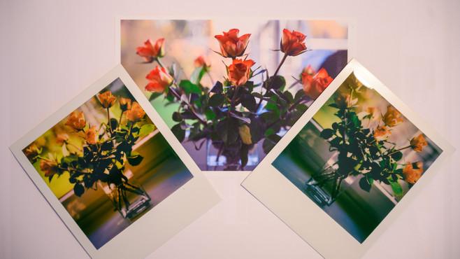 Polaroid Lab – die Bildqualität im Vergleich©COMPUTER BILD