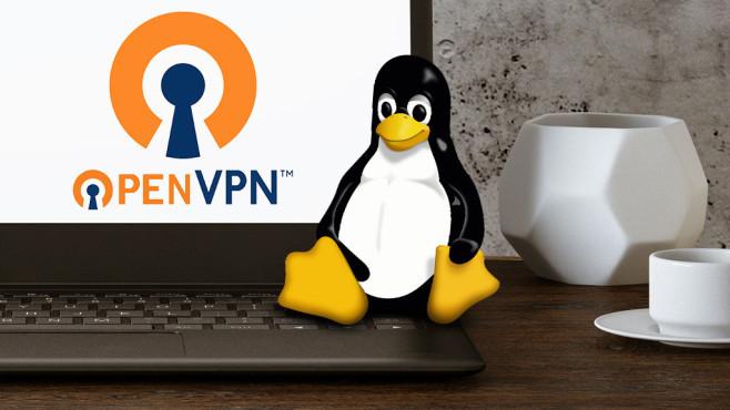Ratgeber: OpenVPN für Linux©iStock.com/asbe