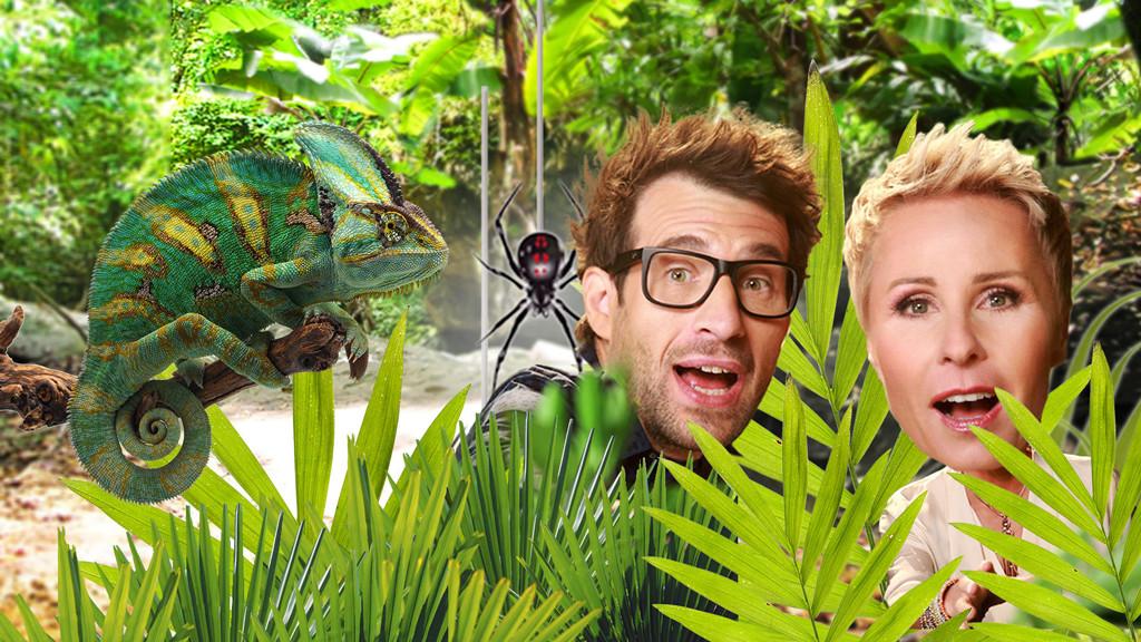 Jungle Camp 2020 Leila